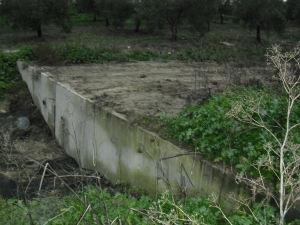 muro_cordoba.jpg